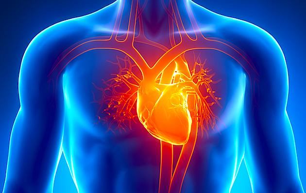 Terapia Clark natural para curar la Enfermedad cardíaca
